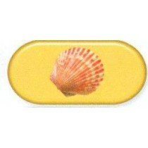 Sea Shell Colourfully Cool Contact Lens Soaking Case